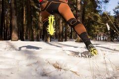 Ход следа зимы стоковая фотография rf