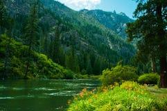Спокойствие потока горы Стоковые Фотографии RF