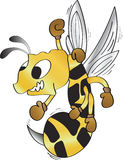 храбрейшее насекомое Стоковые Изображения