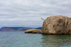 Храбрый человек скачет от высокого утеса скалы в воду моря Стоковая Фотография RF