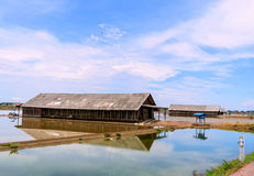 Хранение соли на поле соли Стоковое Изображение