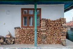 Хранят швырок на длинная зима стоковая фотография rf