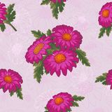 Хризантема вектора Безшовная картина цветков золот-маргаритки Шаблон для флористического украшения, дизайн ткани, упаковывая или бесплатная иллюстрация