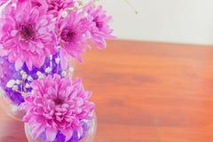 Хризантема в вазе с шариками воды гидрогеля Стоковые Фотографии RF