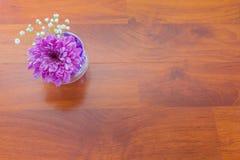 Хризантема в вазе с шариками воды гидрогеля Стоковая Фотография