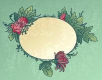 хризантема предпосылки цветет листья Стоковая Фотография