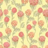 хризантемы безшовные Стоковые Фото