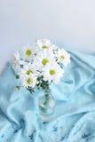 Хризантемы белых цветков на предпосылке голубого одеяла Стоковая Фотография