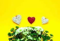 Хризантемы и декоративные сердца на желтой предпосылке декор праздничный стоковое фото rf