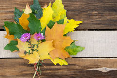 Хризантемы и листья осени на деревянном столе Стоковая Фотография RF