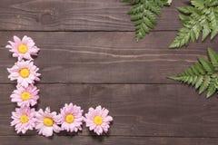 Хризантемы и папоротники на деревянной предпосылке Стоковые Фотографии RF