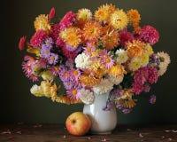 хризантемы Карточка, поздравление, приглашение Стоковая Фотография