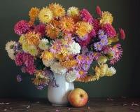 хризантемы Карточка, поздравление, приглашение Стоковые Фотографии RF