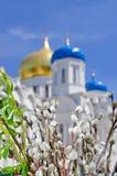 христианская церковь правоверная Торжество Ладонь воскресенье Стоковое Изображение RF
