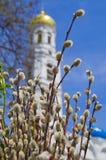 христианская церковь правоверная Торжество Ладонь воскресенье Стоковые Изображения RF