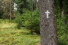 Христианский крест на стволе дерева Стоковые Изображения RF