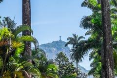 Христос спаситель - ботанический сад Рио-де-Жанейро, Бразилия Стоковое Фото