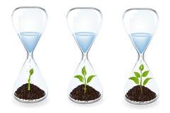 хронометрирует воду вектора ростков стекла иллюстрация штока