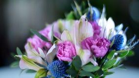 Хрупкость божественной флористической красоты сток-видео