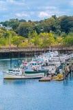 Хряки рыбной ловли около Бостона Стоковые Изображения