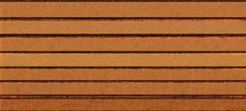 хряков Стоковые Фотографии RF