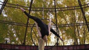 Худенькая блондинка в кольце для воздушной акробатики вверх ногами и делает шпагат, замедленное движение видеоматериал