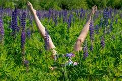 Худенькие женские ноги среди цветков Концепция лета и отдыха стоковое изображение rf