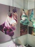 Художественная выставка градации, искусство света стоковые изображения