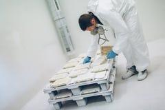 Художник используя airbrush для того чтобы покрасить Стоковая Фотография RF