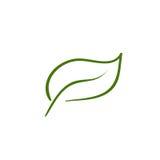 художническая линия листьев Стоковые Изображения RF