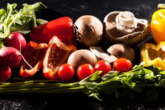 Художническое изображение разного вида здоровых органических овощей o Стоковые Изображения RF