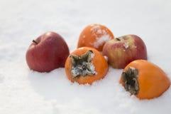 Хурмы и яблоки в снеге Стоковое Фото