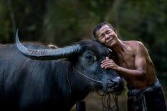 хуторянин буйвола его Стоковая Фотография RF