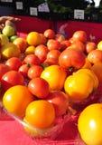 хуторянин выходят красный желтый цвет вышед на рынок на рынок томатов Стоковое Фото