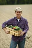 Хуторянин нося клеть овощей Стоковые Изображения