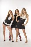 3 худеньких девушки на белой предпосылке Стоковые Изображения