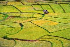 Художественное произведение на земледелии Стоковые Изображения