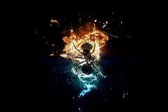 художнический силуэт черепашки Стоковая Фотография RF