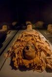 ХЬЮСТОН, США - 12-ОЕ ЯНВАРЯ 2017: Закройте вверх изумительной мумии обернутой с некоторыми ветошами древнего египета в соотечеств Стоковые Изображения RF