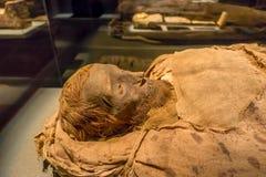 ХЬЮСТОН, США - 12-ОЕ ЯНВАРЯ 2017: Закройте вверх изумительной мумии обернутой с некоторыми ветошами древнего египета в соотечеств Стоковые Изображения