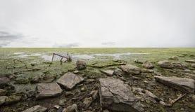 хлам пляжа Стоковая Фотография RF