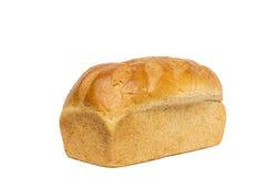 Хлебец хлеба пшеницы меда Стоковая Фотография RF