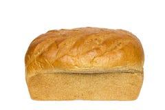 Хлебец хлеба пшеницы меда Стоковое фото RF