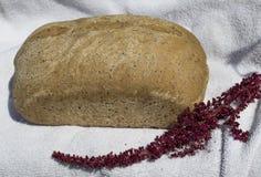 Хлебец хлеба Sourdough амаранта Стоковое Изображение RF