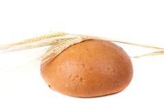 Хлебец черного хлеба при уши рож изолированные на белом backgroun Стоковая Фотография