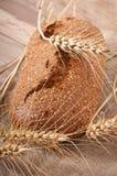 Хлебопекарня и кукурузные початки Стоковые Фотографии RF