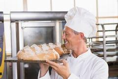 Хлебопек держа поднос хлеба Стоковые Изображения
