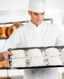Хлебопек смотря тесто в подносе выпечки Стоковые Изображения