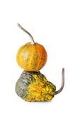 хлебоуборка halloween предпосылки декоративная изолировала белизну символа тыквы Стоковые Изображения RF