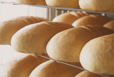 Хлеб в хлебопекарне Стоковые Изображения